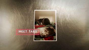 Cuddly TV Spot, 'Tabs the Kitten'