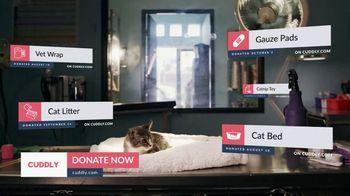 Cuddly TV Spot, 'Tabs the Kitten' - Thumbnail 6