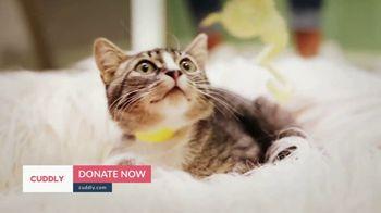 Cuddly TV Spot, 'Tabs the Kitten' - Thumbnail 8