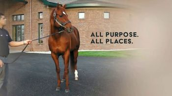 WinStar Farm, LLC TV Spot, 'Speightstown: All Power' - Thumbnail 8