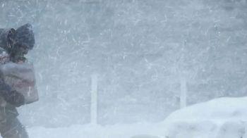 Meijer TV Spot, 'Free Pickup: Snowstorm' - Thumbnail 1