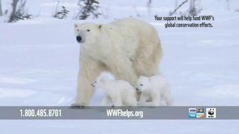 World Wildlife Fund TV Spot, 'Polar Bears: Calender' Song by A Great Big World - Thumbnail 8