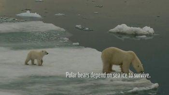 World Wildlife Fund TV Spot, 'Polar Bears: Calender' Song by A Great Big World - Thumbnail 1