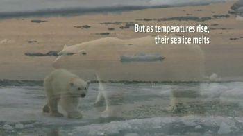 World Wildlife Fund TV Spot, 'Polar Bears: Calender' Song by A Great Big World