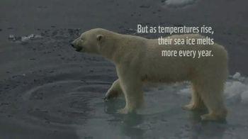 World Wildlife Fund TV Spot, 'Polar Bears: Calender' Song by A Great Big World - Thumbnail 2