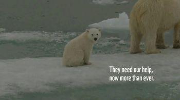World Wildlife Fund TV Spot, 'Polar Bears: Calender' Song by A Great Big World - Thumbnail 3