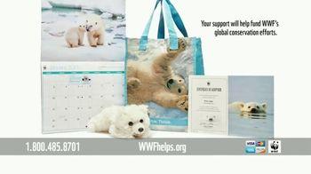 World Wildlife Fund TV Spot, 'Polar Bears: Calender' Song by A Great Big World - Thumbnail 7