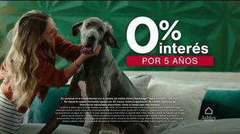Ashley HomeStore Venta del Día de los Presidentes TV Spot, 'Acceso temprano' [Spanish] - Thumbnail 4