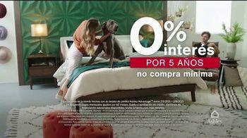 Ashley HomeStore Venta del Día de los Presidentes TV Spot, 'Acceso temprano' [Spanish] - Thumbnail 5