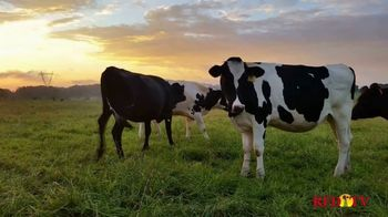 Animal Health International TV Spot, 'Certain Time of the Day'