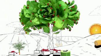 Sprouts Farmers Market TV Spot, 'Celebrate Thanksgiving Goodness' - Thumbnail 2