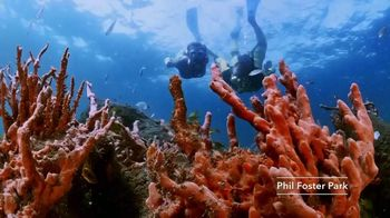 Discover the Palm Beaches TV Spot, 'Golf Capital' - Thumbnail 6
