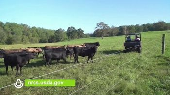 U.S. Department of Agriculture (USDA) TV Spot, 'Cattle Producers' - Thumbnail 7