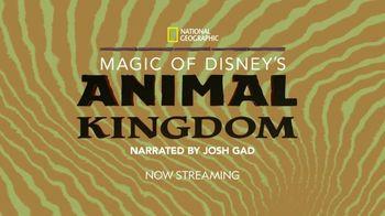 Disney+ TV Spot, 'Magic of Disney's Animal Kingdom' - Thumbnail 9