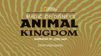Disney+ TV Spot, 'Magic of Disney's Animal Kingdom' - Thumbnail 8