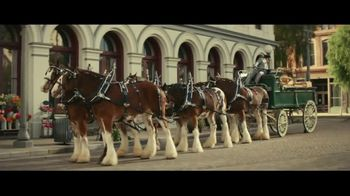Samuel Adams Wicked Hazy IPA TV Spot, 'Your Cousin From Boston Frees the Horses' Feat. Gregory Hoyt - 206 commercial airings