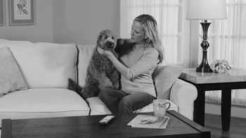Paw Perfect Hair Trimming System TV Spot, 'Double Offer' - Thumbnail 1