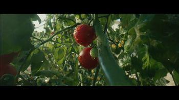 Chipotle Super Bowl 2021 TV Spot, 'Can a Burrito Change the World?' - Thumbnail 4