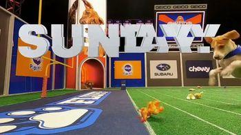 Discovery+ TV Spot, 'Puppy Bowl XVII' Featuring Snoop Dogg, Martha Stewart - Thumbnail 2