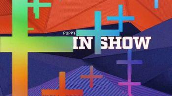 Discovery+ TV Spot, 'Puppy Bowl XVII' Featuring Snoop Dogg, Martha Stewart - Thumbnail 5