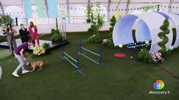 Discovery+ TV Spot, 'Puppy Bowl XVII' Featuring Snoop Dogg, Martha Stewart - Thumbnail 6