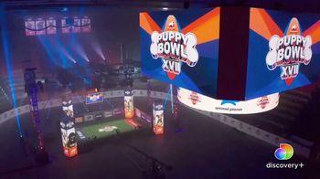 Discovery+ TV Spot, 'Puppy Bowl XVII' Featuring Snoop Dogg, Martha Stewart - Thumbnail 8