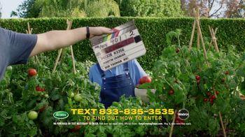 Scotts Dream Lawn and Garden Giveaway TV Spot, 'Martha Stewart Gardening: Keep Growing' - Thumbnail 3
