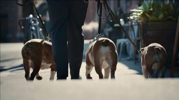 2021 Toyota Corolla TV Spot, 'The Pack' Featuring David Morse, Song by Alex Britten, AX UX [T2]
