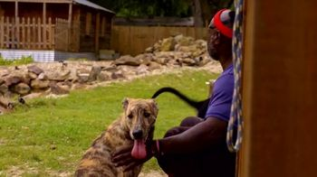 Discovery+ TV Spot, 'Animal Planet' - Thumbnail 4