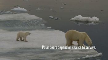 World Wildlife Fund TV Spot, 'Polar Bears: $12 a Month' Song by A Great Big World - Thumbnail 2