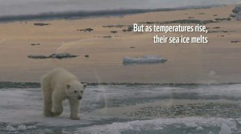 World Wildlife Fund TV Spot, 'Polar Bears: $12 a Month' Song by A Great Big World - Thumbnail 3