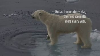 World Wildlife Fund TV Spot, 'Polar Bears: $12 a Month' Song by A Great Big World - Thumbnail 4