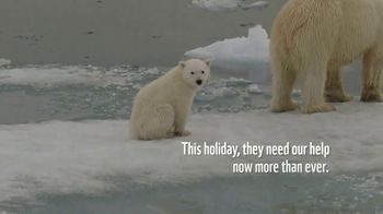 World Wildlife Fund TV Spot, 'Polar Bears: $12 a Month' Song by A Great Big World - Thumbnail 5