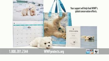 World Wildlife Fund TV Spot, 'Polar Bears: $12 a Month' Song by A Great Big World - Thumbnail 9
