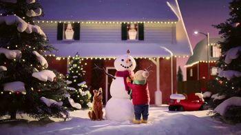 Greenies Dental Treats TV Spot, 'Holidays: Snowman'