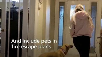 Kidde United Technologies TV Spot, 'We Love Pets' - Thumbnail 7