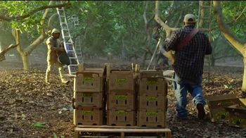 Chipotle Mexican Grill TV Spot, 'From the Earth' - Thumbnail 5
