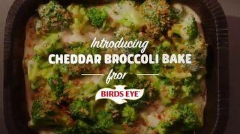 Birds Eye Cheddar Broccoli Bake TV Spot, 'Yes Please' - Thumbnail 1