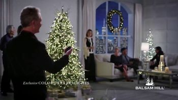 Balsam Hill Cyber Monday Sale TV Spot, 'This Tree: Up to 50% Off' - Thumbnail 3
