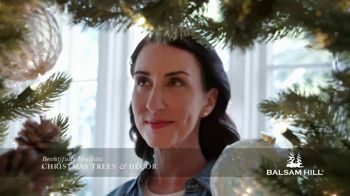 Balsam Hill Cyber Monday Sale TV Spot, 'This Tree: Up to 50% Off' - Thumbnail 6