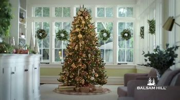 Balsam Hill Cyber Monday Sale TV Spot, 'This Tree: Up to 50% Off'