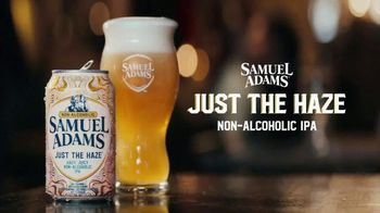 Samuel Adams Just the Haze TV Spot, 'Your Cousin Tries Sam Adams Non-Alcoholic IPA' Featuring Gregory Hoyt - Thumbnail 8