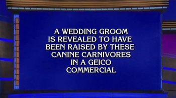 GEICO TV Spot, 'Jeopardy: Wolves' - Thumbnail 1