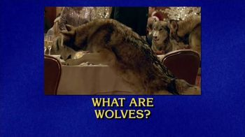 GEICO TV Spot, 'Jeopardy: Wolves' - Thumbnail 6