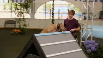 Discovery+ TV Spot, 'Puppy Bowl Presents: The Dog Games' - Thumbnail 7