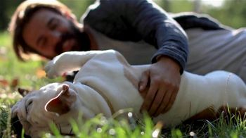 Nationwide Pet TV Spot, 'Ready for Whatever' - Thumbnail 5