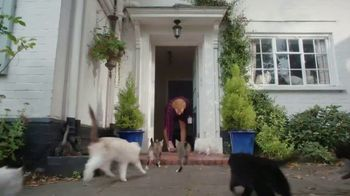 AmeriSave Mortgage TV Spot, 'Mike the Cat Lady Man: Home Loan' - Thumbnail 4