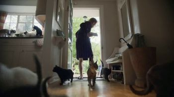 AmeriSave Mortgage TV Spot, 'Mike the Cat Lady Man: Home Loan' - Thumbnail 5