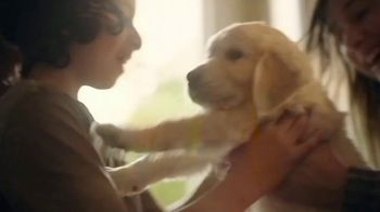 Chewy.com TV Spot, 'New Pet: All the Moments: Pet Essentials'