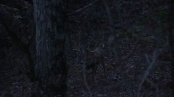 Woodhaven Custom Calls TV Spot, 'Big Buck' - Thumbnail 2